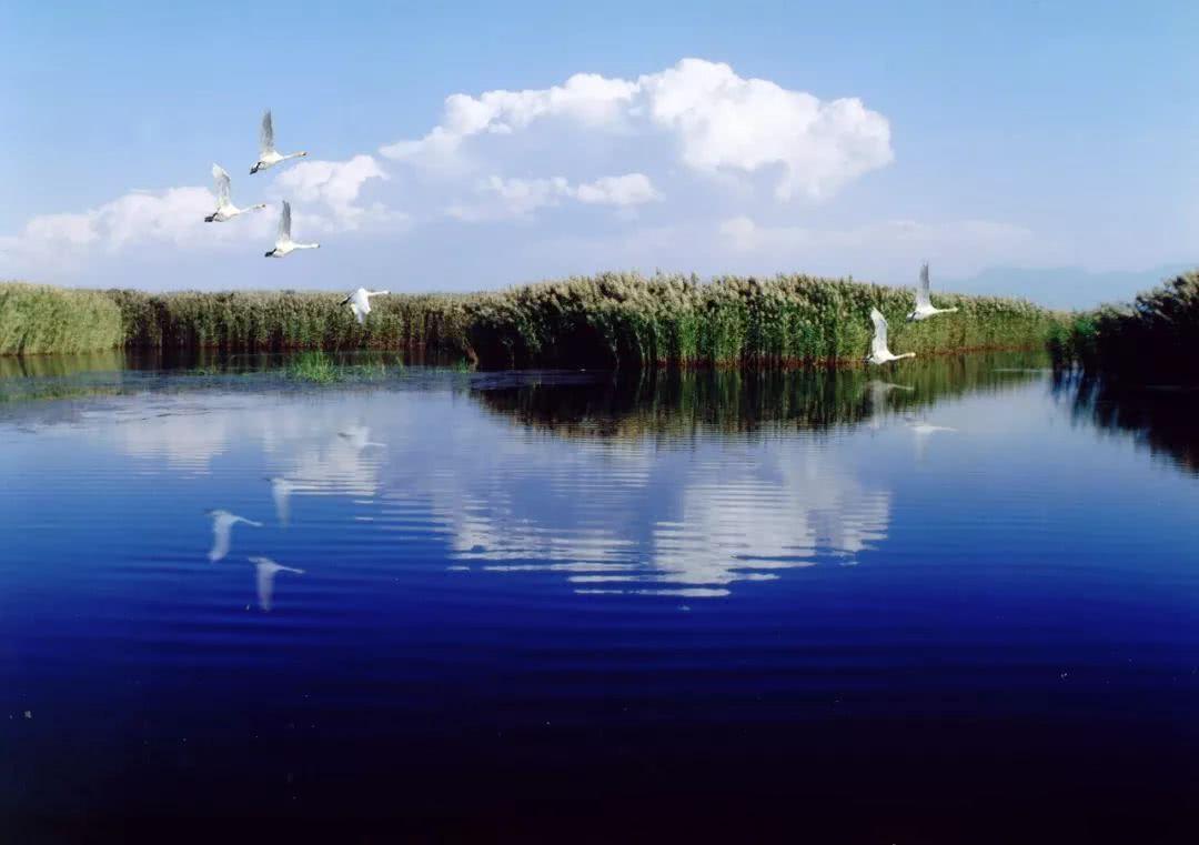 内蒙古乌梁素海